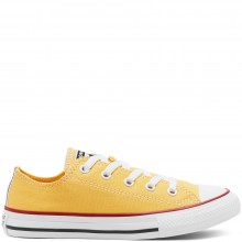 CONVERSE SEASONAL COLOR CHUCK TAYLOR ALL STAR LOW TOP VOOR KIDS
