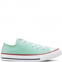 Older Kids Seasonal Colour Chuck Taylor All Star Low Top