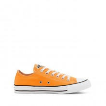 SEASONAL COLOUR CHUCK TAYLOR ALL STAR LOW TOP